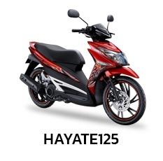 Suzuki HAYATE125