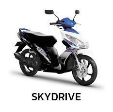Suzuki SKYDRIVE